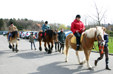equitation (7)